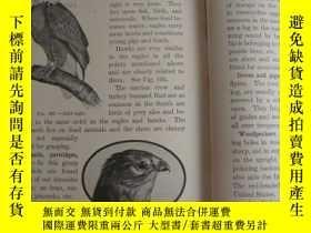 二手書博民逛書店A罕見text-book in General Zoology