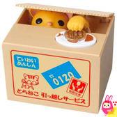 Hamee 日本正版 惡作劇BANK 療癒系 偷錢貓咪 紙箱動物偷錢 存錢筒 儲金箱 (虎斑多拉) 376428