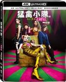 【停看聽音響唱片】【BD】猛禽小隊:小丑女大解放 雙碟限定鐵盒版『4K』