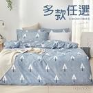 舒柔棉雙人加大床包涼被四件組-多款任選 文青質感