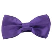 【Alpaca】紫色基本款領結