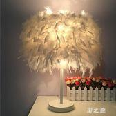 台燈 歐式時尚羽毛落地台燈結婚慶宜家裝飾燈具臥室床頭創意客廳小燈飾 CP2936【野之旅】