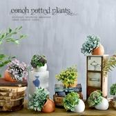 伊人閣 小盆栽假花盆景綠植桌面擺件裝飾品