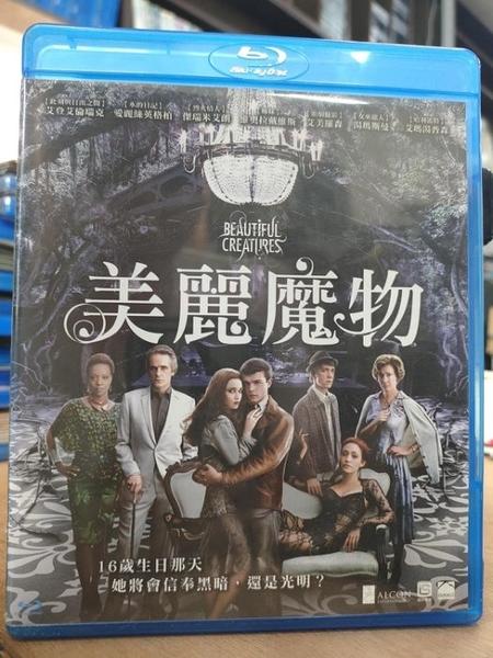 挖寶二手片-0294-正版藍光BD【美麗魔物】熱門電影(直購價)