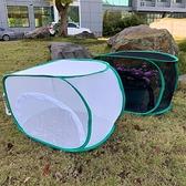 防鳥網 迷你植物防蟲防貓防鳥家用防蟲網多肉植物保護罩