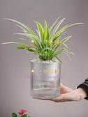 自動吸水小花盆懶人綠蘿植物透明水培塑料自水養盆器器皿【奇妙商舖】