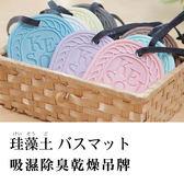 日本進口HIRO珪藻土 吊掛式吸濕乾燥劑 調濕劑乾燥塊 除溼 抗菌 (附掛繩)