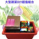 【綠藝家】大型蔬菜DIY超值組合(型號Y01A)