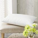 枕頭 230織表布/匈牙利進口羽絨/英格蘭羽絨枕2入/美國棉授權品牌[鴻宇]台灣製