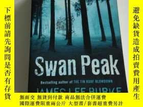 二手書博民逛書店Swan罕見peak(英文)Y212829
