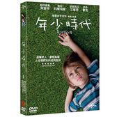 年少時代 DVD (音樂影片購)
