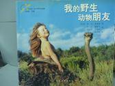 【書寶二手書T5/攝影_PGQ】我的野生動物朋友_蒂皮‧德格雷