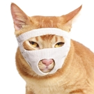 貓咪眼罩貓口罩貓面罩防咬透氣貓嘴套貓臉罩清潔美容洗澡寵物用品 陽光好物