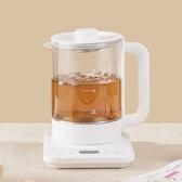 養生壺家用多功能迷你全自動小型養身玻璃熱水煮茶器電茶壺
