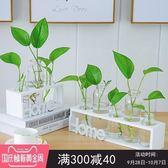 水培小花瓶創意玻璃綠蘿透明小清新水養植物桌面裝飾擺件客廳插花