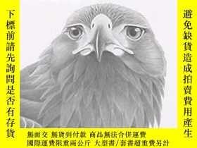 二手書博民逛書店鳥類 猛禽素描繪畫技法初學者素描罕見Drawing BirdsY238343 Search Press 出