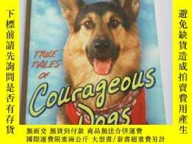 二手書博民逛書店Courageous罕見dogs(英文)Y212829