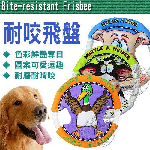 【培菓幸福寵物專營店】美國Fatcat寵物耐咬立體麻繩飛盤 (隨機出貨)不傷寵物嘴巴