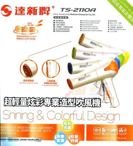 達新牌 TS-2110A 專業吹風機(促銷~隨機出色)