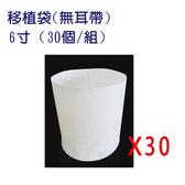 移植袋.美植袋6寸(無耳帶)//型號PB06(30個/組)