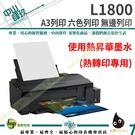 EPSON L1800【熱昇華墨水】A3原廠連續供墨印表機