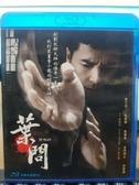 挖寶二手片-Q02-218-正版BD【葉問】-藍光電影(直購價)