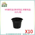 【綠藝家】4吋蘭花盆(黑吊耳盆.洋蘭吊盆)10入/組