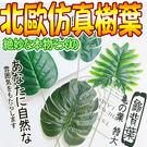 【培菓平價寵物網】北歐ins簡約風仿真樹...