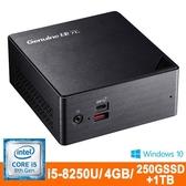 Genuine捷元QP888-5S i5-8250U/4GB /1TB/250G+1TB/Win Pro