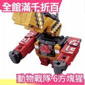【方塊猩】日本 日版原裝 萬代BANDAI 動物戰隊 DX 6號魔術動物方塊猩 獸王者【小福部屋】