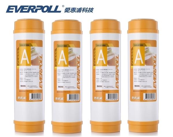 EVERPOLL樹脂濾心EVB-M100A【10英吋標準規格】●一次購4支,優惠價1000元●免運費