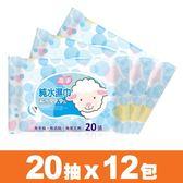 【海淨】純水濕紙巾(20張X12包)~純水99.9%、無香精、無酒精、無螢光劑【台灣製】。