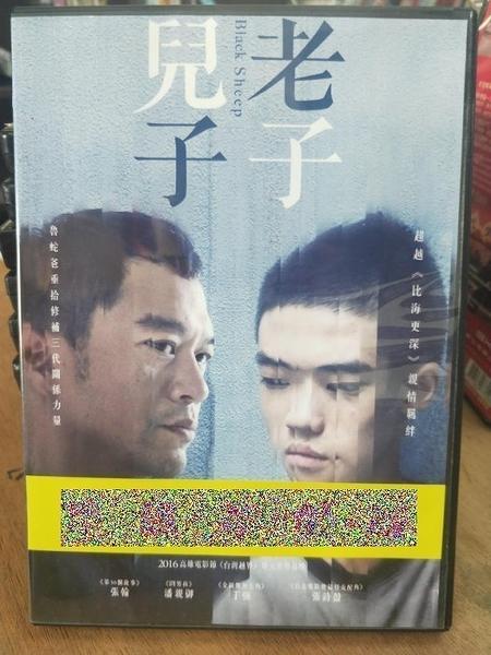 挖寶二手片-0B01-645-正版DVD-華語【兒子老子】-張翰 潘親御 丁強 張詩盈(直購價)