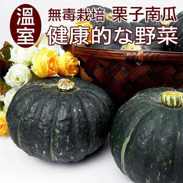 【鮮採家】溫室無毒栗子南瓜5台斤1箱