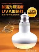 烏龜曬背爬蟲用品爬寵沙漠UVA日燈強烈型加熱燈鬃獅蜥蜴爬蟲陸龜箱聚光燈 獨家流行館