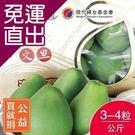 買就捐-沁甜果園SSN 頂級文旦小禮盒3-4粒裝/公斤 E009X0001【免運直出】