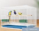 鳥籠 籠鸚鵡小號大號繁殖鴿子籠子家用八哥畫眉鳥籠子 微愛家居生活館