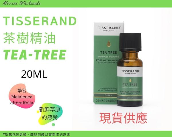 Tisserand 茶樹精油 Tea Tree Essential Oil 20ml 現貨正品 快速發貨【Morene】