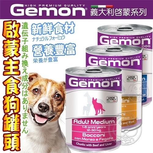 此商品48小時內快速出貨》義大利Gemon啟蒙》幼犬/小型犬/成犬主食狗罐頭-415g*24罐