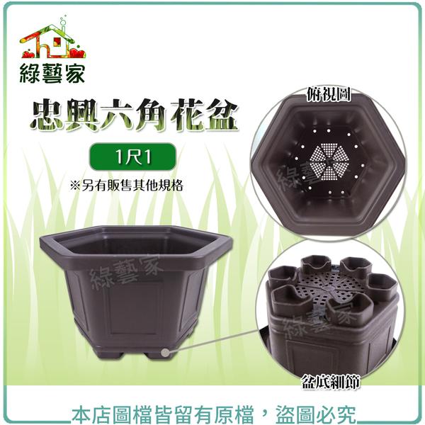 【綠藝家】忠興六角花盆 1尺1(加厚材質)