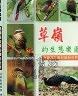 二手書R2YB91年10月初版《草嶺的生態樂園 鳥類與蛙類的繽紛世界》張恒嘉 雲