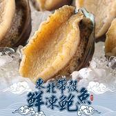 【愛上新鮮】東北帶殼鮮凍鮑魚20顆組(500g±10%/包)