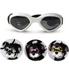 可折疊寵物眼鏡