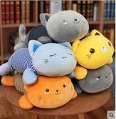 貓咪抱枕被子兩用-午睡枕頭辦公室空調被毯子