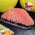 【果之家】特選薄皮紅肉葡萄柚5台斤(約1...