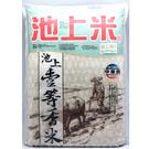 台東池上一等香米6kg(CNS1等米)【愛買】