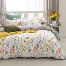鴻宇 雙人特大薄被套床包組 100%精梳純棉 如茵草 台灣製C20102