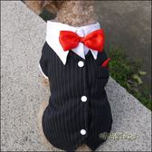 寵物燕尾小狗西裝西服襯衣泰迪狗狗衣服寵物結婚禮服泰迪夏裝「時尚彩虹屋」
