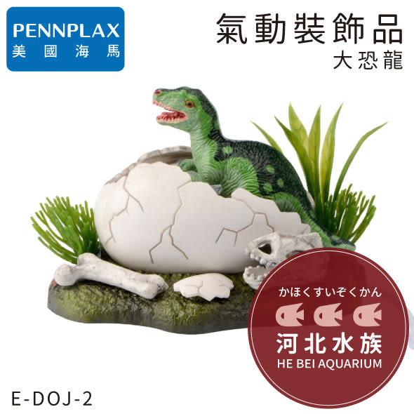 [ 河北水族 ] PENNPLAX海馬 【 氣動裝飾品 大恐龍蛋 】 龐貝 氣動式 氣動飾品 飾品 造景 水族 VENY S
