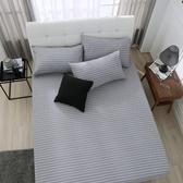 床包組 雙人加大-純棉床包組/巴洛克[鴻宇]台灣製2092